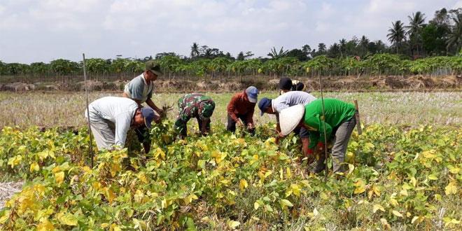 Gapoktan Harus Sukseskan Program Pemerintah di Bidang Pertanian